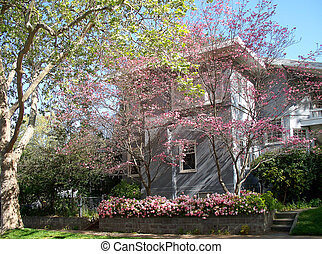 home sweet home - Sacramento neighbord-hood, California