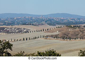 Crete Senesi - The landscape of the  Tuscany. Italy