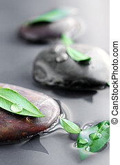 Stones in water - Stones submerged in water with green...