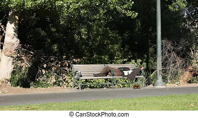 man sleeps on bench wide - This is a static wide shot of a...