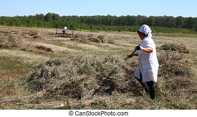 Man and woman gather hay in a hayst