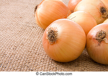 onion on sacking - onion on sack background material