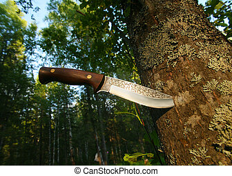 hunting knife in tree trunk - big hunting knife in tree...