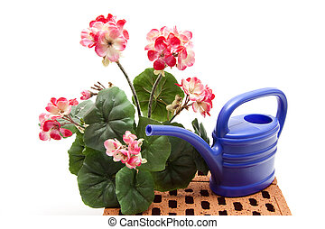 Flowers with watering can