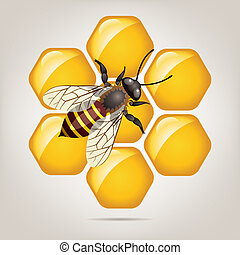vector working bee on honeycells - vector symbol of working...