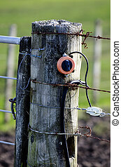 Electric Fence - Close up of electric fence in rural spring...
