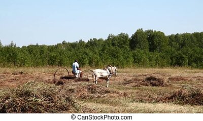 Peasant. On the farm - Man on a horse gathers hay in the...