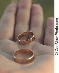 dos, boda, anillos, Palma