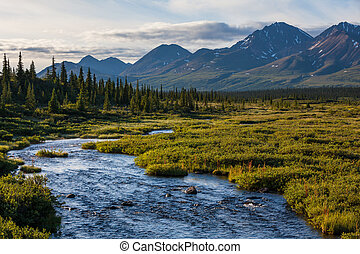 Lake on Alaska - river in tundra on Alaska