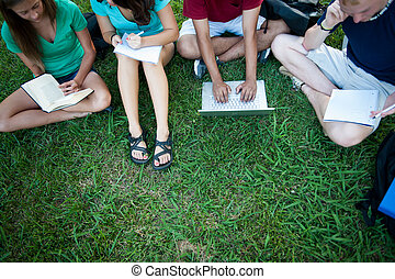 Teenagers studying outside - A group of four eenagers...