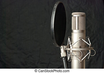 Condenser Microphone - Close-up of a condenser microphone
