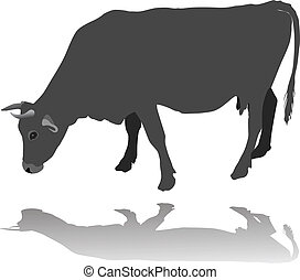 Cow eating vector illustration