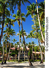 Tropical resort - Palm trees surrounding a hotel at tropical...