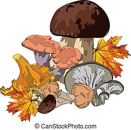 autumn still life with mushrooms and maple leaves on a white...
