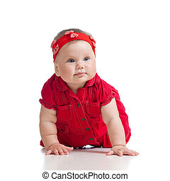 pretty crawling baby girl isolated on white background -...