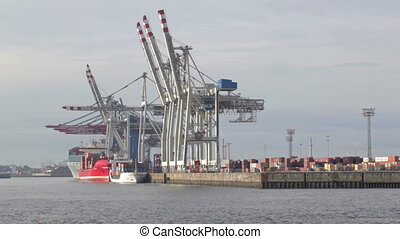 Unloading of the cargo ship at the Hamburg port on the Elbe...