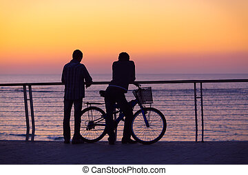 Silhouettes of two men with a bicycle - talking and watching...