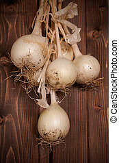 FRESH-PICKED ONIONS - Fresh picked onion on clearly wood...