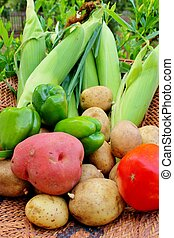 Basket of Vegetables 9