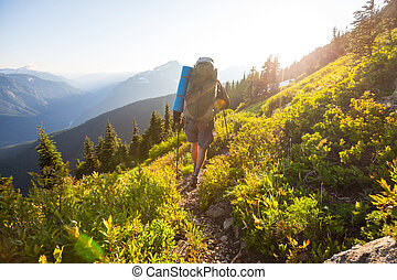 Summer hike - backpacker  in summer mountains