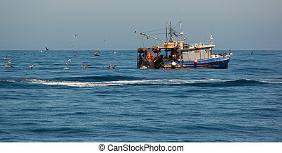 Commercial Fishing Boat - Birds chasing commercial fishing...