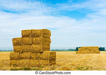 stack of hay bales - A stack of hay bales in a rural...