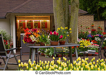 flower shop in Keukenhof garden - variety of flowers in pots...