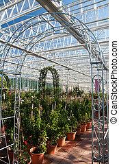 Inside of a big garden center