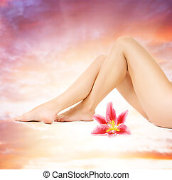 Female legs with pink lily over heaven background