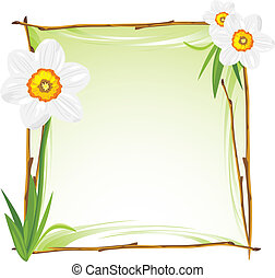 Wooden frame with daffodils. Vector illustration