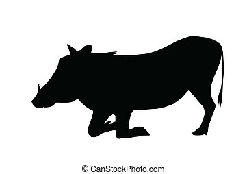 Isolated Silhouette Warthog on Knees - Isolated Silhouette...