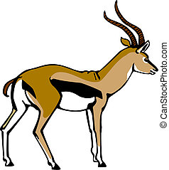 Thompsons Gazelle - vector illustration of a male Thompsons...