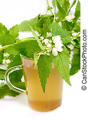 Healthy herb tea - A glass of stinging nettle tea on bright...