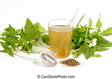 Herb Tea - A cup of herb tea with stinging nettle on bright...