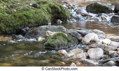 mountain stream nature scene