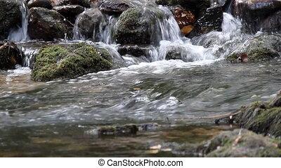 spring water nature scene