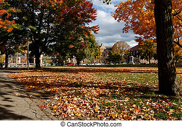 Cambridge Common in Fall, View towards Harvard Law School -...