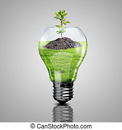 Electric light bulb and a plant inside it as symbol of green...