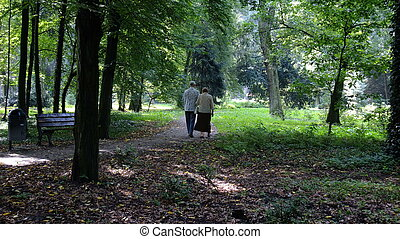 Senior couple in the park sitting on the bench