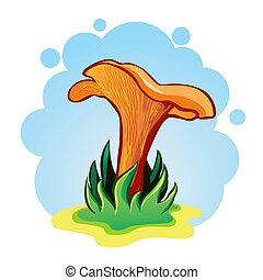 vetorial, Ilustração, cogumelos