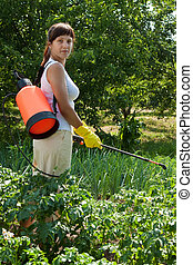 Woman spraying potato plant