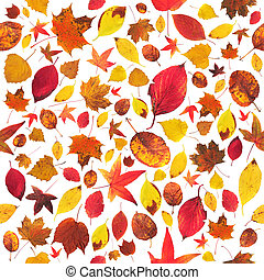 Leaves wallpaper - Cheerful colorful seamless leaves...