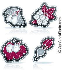 Vegetarian food - Healthy food - fruits and vegetables icons...