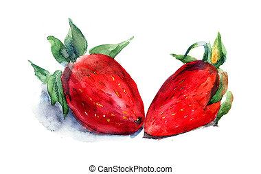 acuarela, fresa, Ilustración