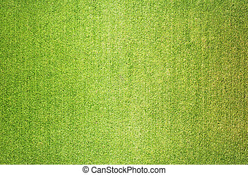Green grass abstract texture and background
