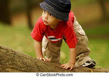 Little Climber - Small boy climbing over a fallen tree.