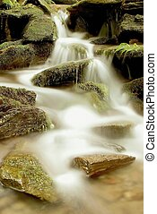 Forest stream flowing over the stones