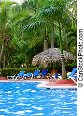 Swimming pool and palm trees at tropical resort