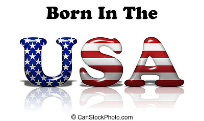 Born In The USA - The words Born In The USA in the American...