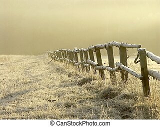 Landscape on a misty morning - Wooden fence on the pasture...